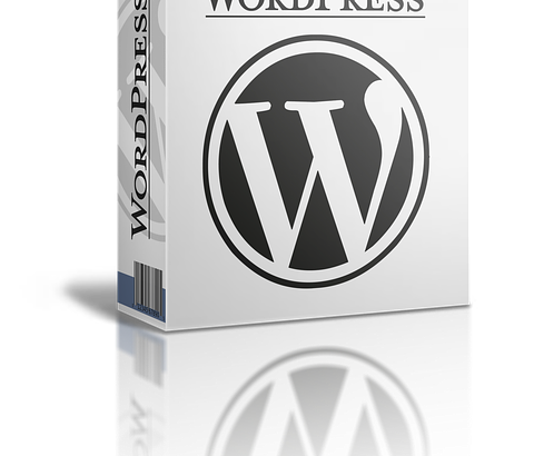 WordPressブログの作り方は難しい?半日で開設できるマニュアルについて